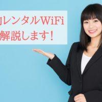 国内,レンタル,wifi,解説